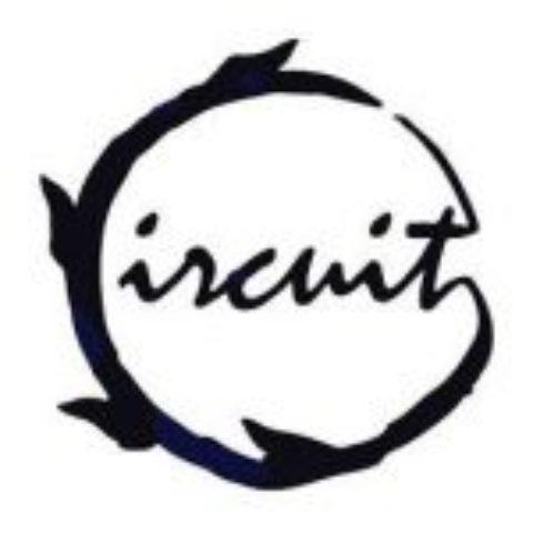 CIRCUIT dă startul înscrierilor destinate tinerilor artiști!